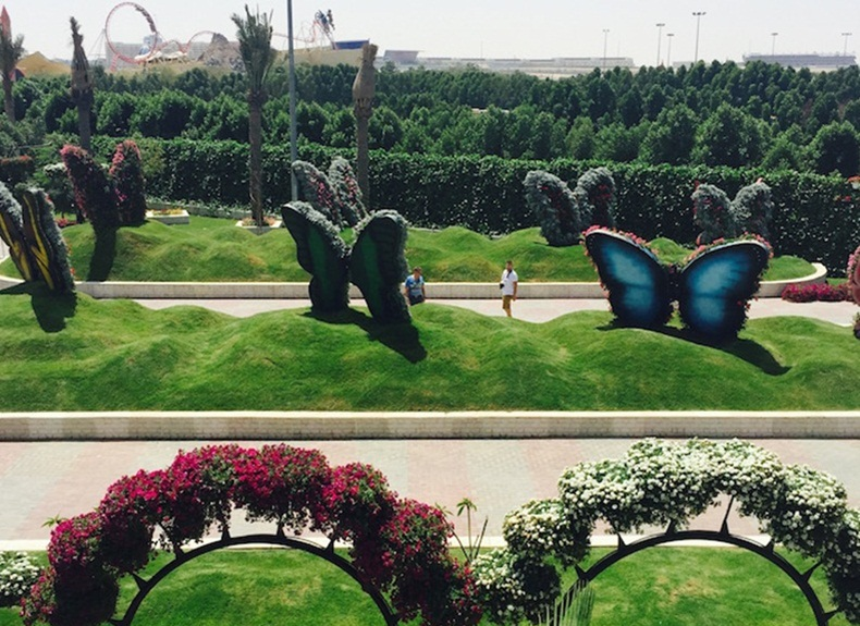 Dubai Attractions, Dubai Butterfly Garden, things to see in Dubai, UAE news