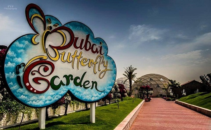 Dubai butterfly garden, Dubai tourist places, Dubai attractions