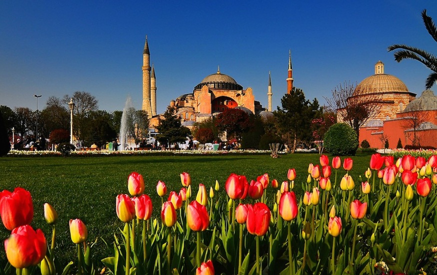 Istanbul tulip festival, Turkey travel, Turkey facts, iEagle travel